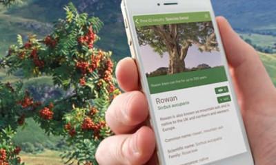 Free Woodland Trust Tree App