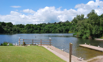 Decoy Country Park | Newton Abbot, Devon