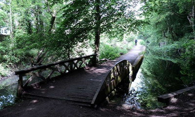 Glamorgan Canal Nature Reserve | Cardiff, Wales