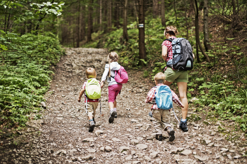 Woman hiking with 3 young children in woodland area