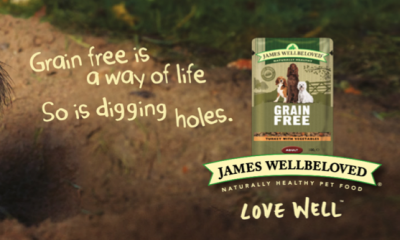 Free James Wellbeloved Dog Grain Free Wet Pouch