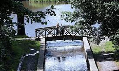 Gnoll Country Park | West Glamorgan, South Wales