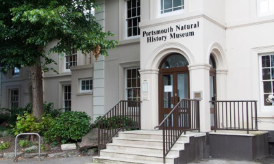 Cumberland House Natural History Museum | Portsmouth