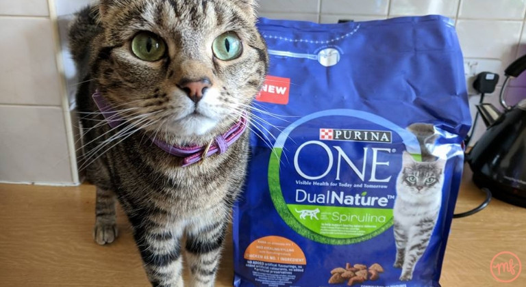Cat next to a bag of Purina ONE cat food
