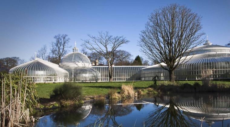 Sunny winter's day at Glasgow Botanical Gardens
