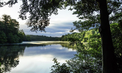 Virginia Water Lake | Runnymede, Surrey