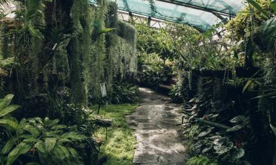 Botanic Gardens | Inverness, Scotland