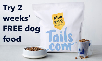 Free Two Week Supply of Dog Food Worth Up to £27 - IT'S BACK