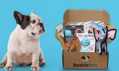 Free Box of Dog Goodies