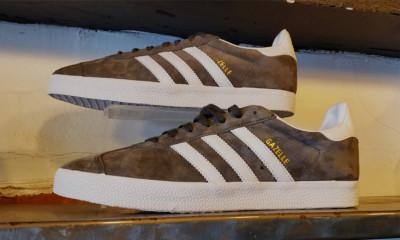 Free Adidas Trainers