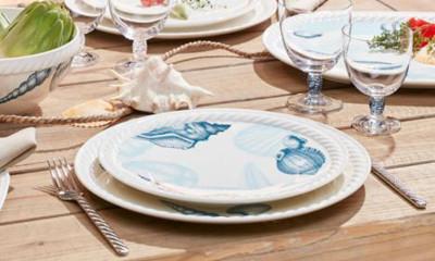 Free Villeroy & Boch Plate (worth £17)