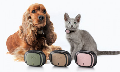 Free Pet GPS Collar