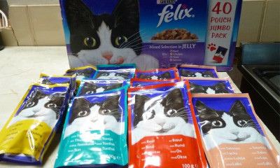 Free Felix Cat Food