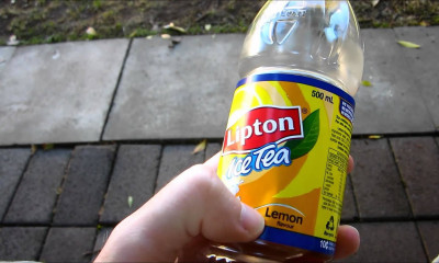 Free Lipton Iced Tea
