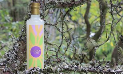 Free Bottle of Slange Var
