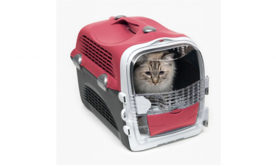 Free Cat Carrier
