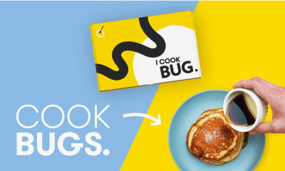 Free Bug Cooking Kits