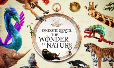 Win a School Trip to 'Fantastic Beasts: The Wonder of Nature' at the Natural History Museum