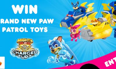 Win a Paw Patrol Toy Bundle