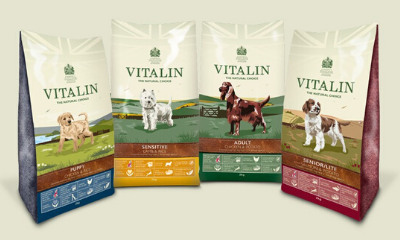 Free Dog Food from Vitalin