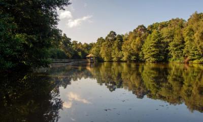 Tilgate Park | Crawley, West Sussex