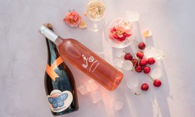 Win a Full Case of Babylonstoren Wine