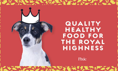 Free Dog Food from Pixie
