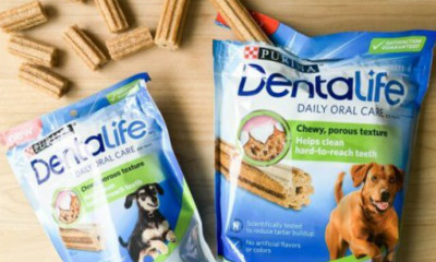 Free Purina Dental Chews