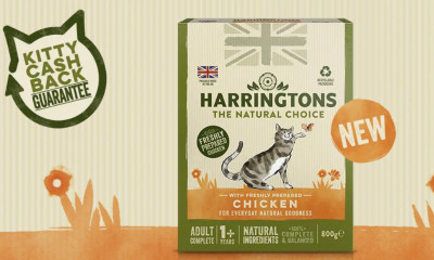 Free Cat Food from Harringtons