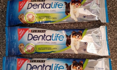Free Dentalife Dog Treat - 5,000 Available