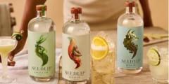 Free Seedlip Gin