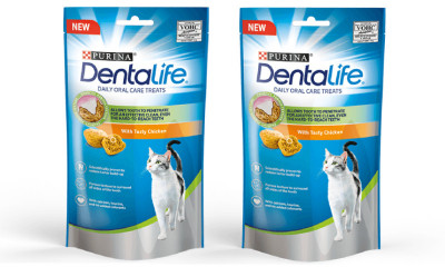Free Dentalife Cat Treats