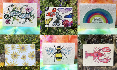 Win a £250 Voucher for Plantable Cards