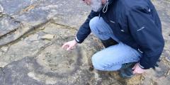 The Spyway Dinosaur Footprints | Swanage, Dorset