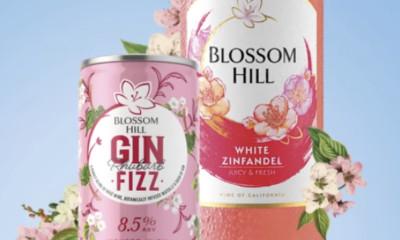 Free Blossom Hill Wine Bundle