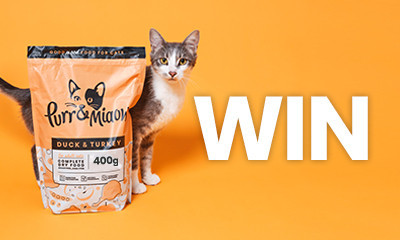 Free Bag of Purr & Miaow Cat Food