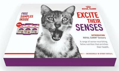 Free Royal Canin Cat Food