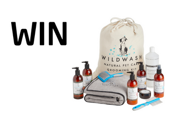 Win a Dog Grooming Kit from WildWash