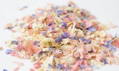 Free Flower Confetti